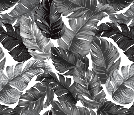 Black and White Tropical Leaves, Banana Leaves on White fabric by furbuddy on Spoonflower - custom fabric