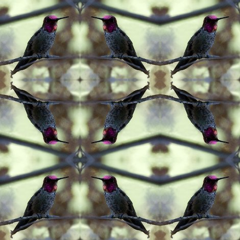 Rrrhummingbird8x8-a_shop_preview