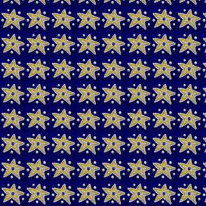 Starfish_1a