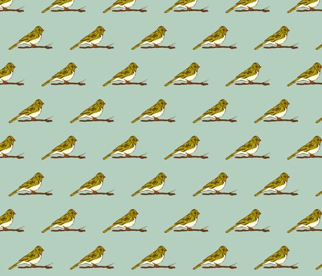 Rbirdy_blue_shop_preview