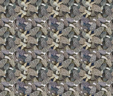 Morel Dilemma Too fabric by helenklebesadel on Spoonflower - custom fabric