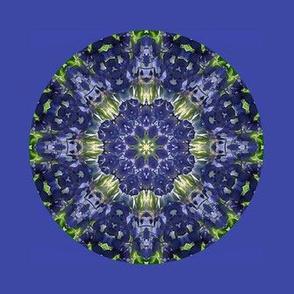 1000 -Kaleidoscope