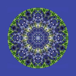 1200 -Kaleidoscope
