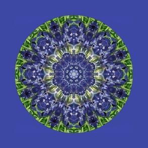 1400 -Kaleidoscope