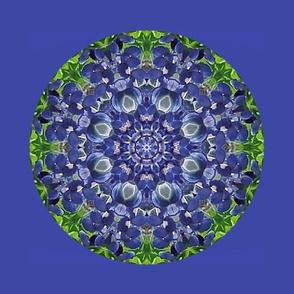 1600 -Kaleidoscope
