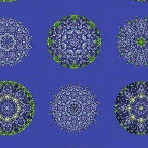 bluebonnet-kal-01