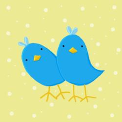 Quizzical_Birds
