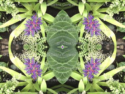 Bromeliad Pattern - Debra Cortese Designs