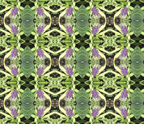 Bromeliad Pattern - Debra Cortese Designs fabric by debracortesedesigns on Spoonflower - custom fabric