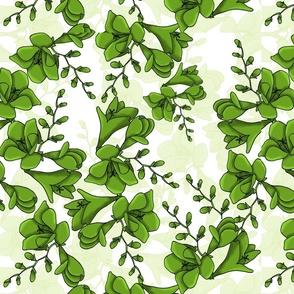 Freesia Green