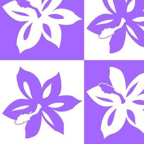 Lavender_Hibiscus