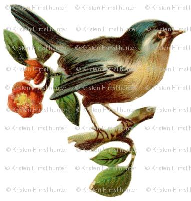 bird_on_a_twig