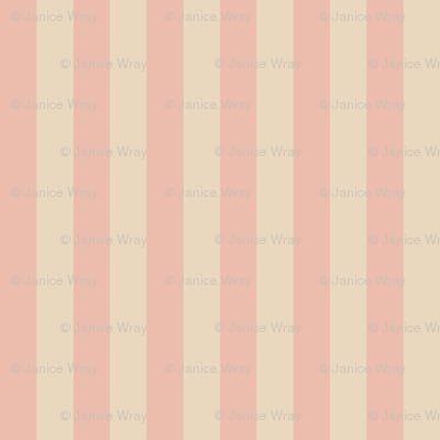 cameo stripes
