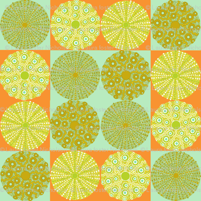 sea_urchins_check_aqua_orange_big