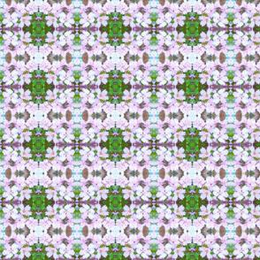 cubistic flowering plum