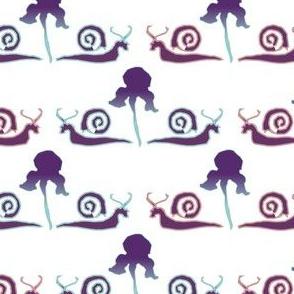 Snail-Iris-1