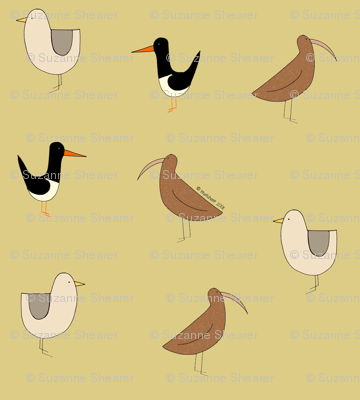 birds_layout_final