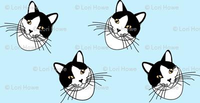 Cat face in blue