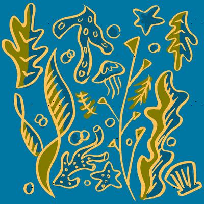 seaweed300