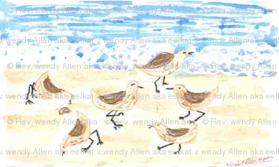 Sandpipers on Old Orchard Beach