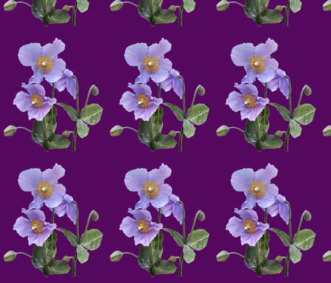 Meconopsis-150crsshtch-CROP-REDVIOL fabric by mina on Spoonflower - custom fabric