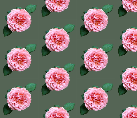 Rose-wtrclr-GRN fabric by mina on Spoonflower - custom fabric