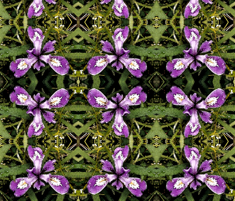 Pacific-iris-7in-fabric-150-wtrclr fabric by mina on Spoonflower - custom fabric