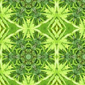 Leaves16