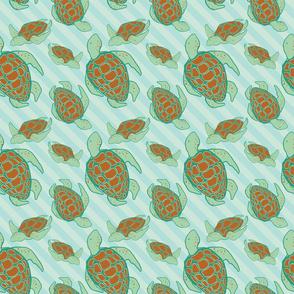 turtlelgblue
