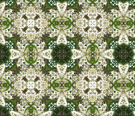 spring-01 fabric by rajordan on Spoonflower - custom fabric