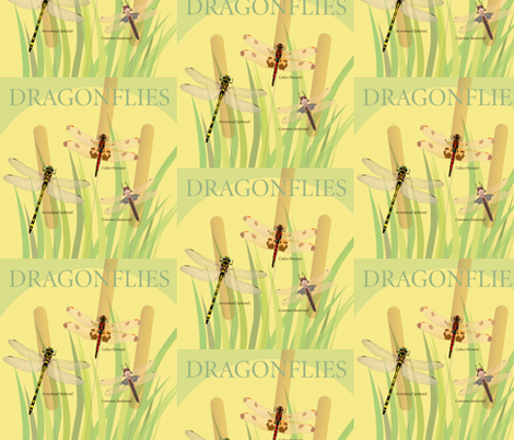 Dragonflies fabric by margaretsart on Spoonflower - custom fabric