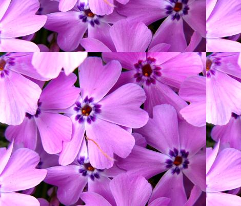 pink_heaven fabric by thinkoutsidethebox on Spoonflower - custom fabric