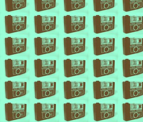 keystone camera/mint 1 fabric by simbiosis on Spoonflower - custom fabric