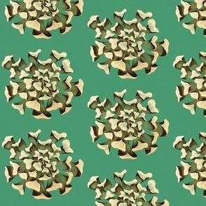 Med-Succulent