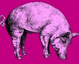 Pigpink_thumb