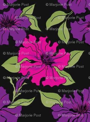 Magenta and Purple Petunias