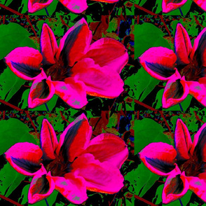 pink_flower_with_green_leaves