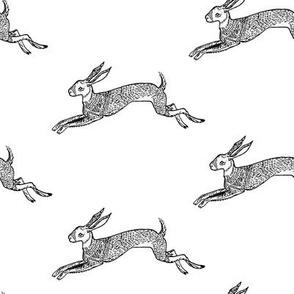 Inky Hare