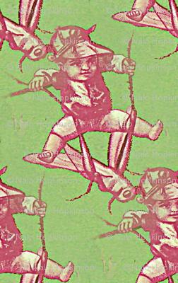 Cricket rider