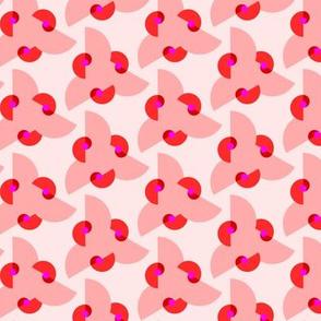 pink_nautilus