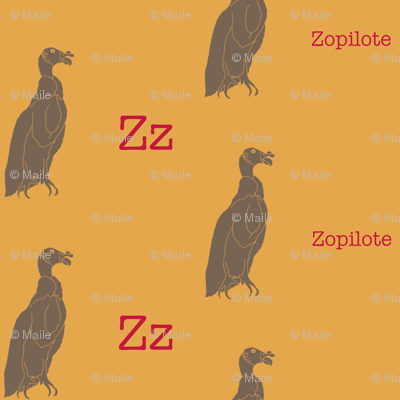 Z is for Zopilote