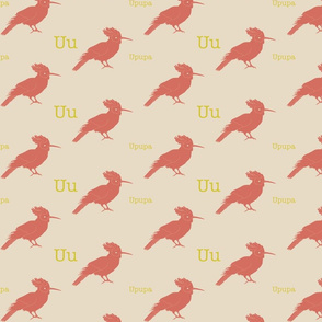 U is for Upupa