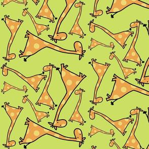 giraffes on green