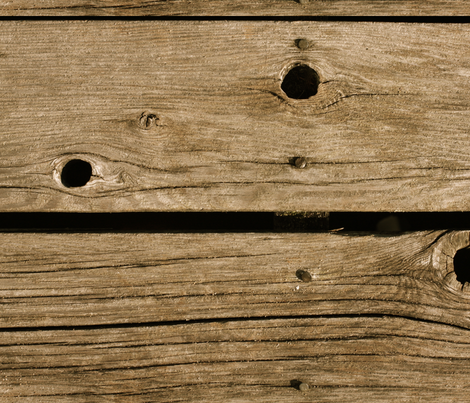 Wooden Dock fabric by studiotart on Spoonflower - custom fabric
