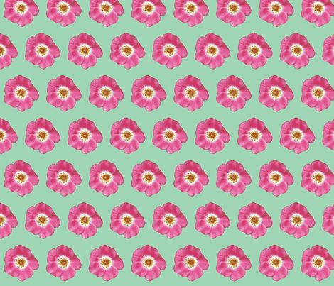 single pink rose lt green_09_004 fabric by khowardquilts on Spoonflower - custom fabric