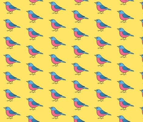 Rbirds2_ed_shop_preview