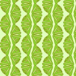 anemone stripes green