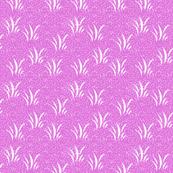 Grassy Pink
