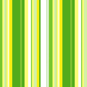 Lemon Lime Stripe