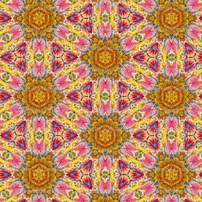Ginette Honey Sun Pattern